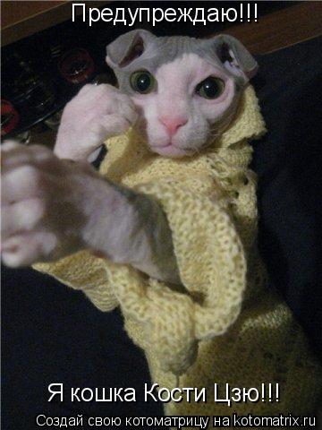 Котоматрица: Предупреждаю!!! Я кошка Кости Цзю!!!