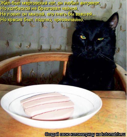 Котоматрица: Жил-был мартовский кот, он любил антрекот, Но колбаской не брезговал чайной, Не ловил он мышей, его гнать бы взашей... Но красив был, подлец, чр