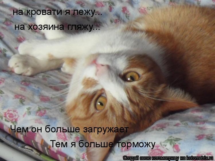Котоматрица: на кровати я лежу... на хозяина гляжу... Чем он больше загружает Тем я больше торможу