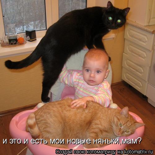 Котоматрица: и это и есть мои новые няньки,мам?