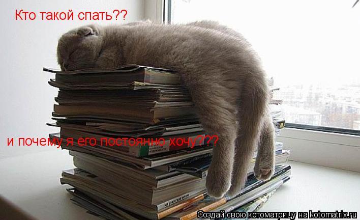 Котоматрица: Кто такой спать?? и почему я его постоянно хочу???