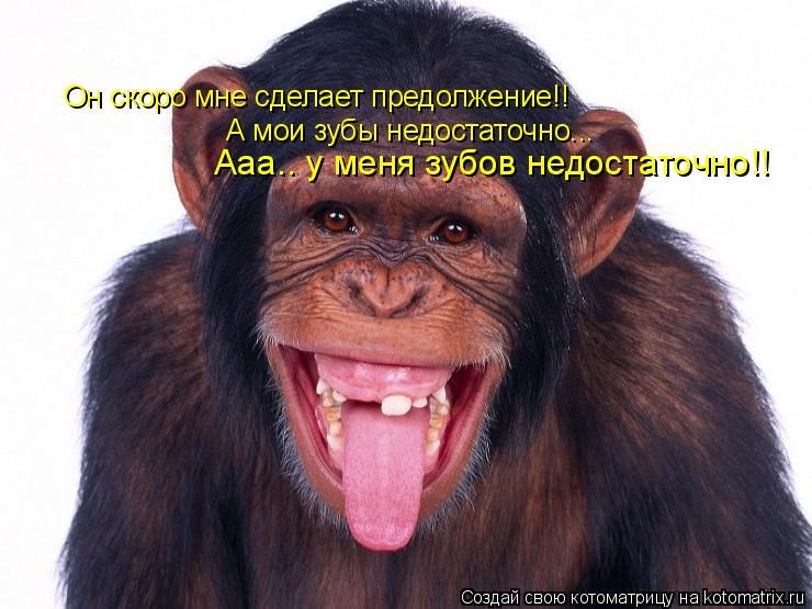Котоматрица: Он скоро мне сделает предолжение!! А мои зубы недостаточно... Ааа.. у меня зубов недостаточно!!