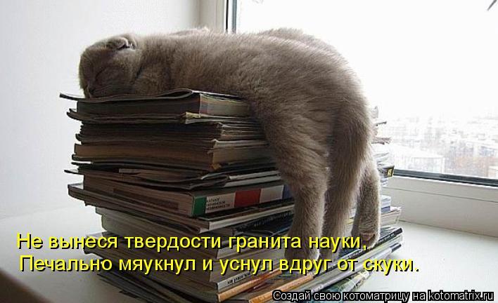 Котоматрица: Не вынеся твердости гранита науки, Печально мяукнул и уснул вдруг от скуки.