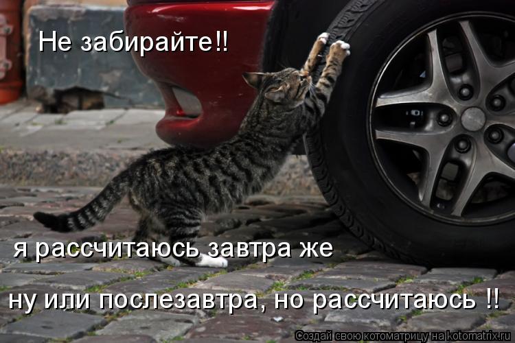 Котоматрица: Не забирайте!! я рассчитаюсь завтра же ну или послезавтра, но рассчитаюсь !!