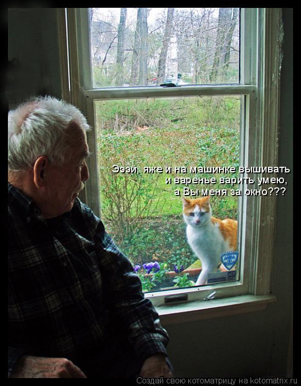 Котоматрица: Эээй, яже и на машинке вышивать  и варенье варить умею, а Вы меня за окно???