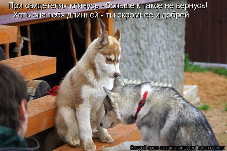 http://kotomatrix.ru/images/lolz/2008/10/30/Ef.jpg