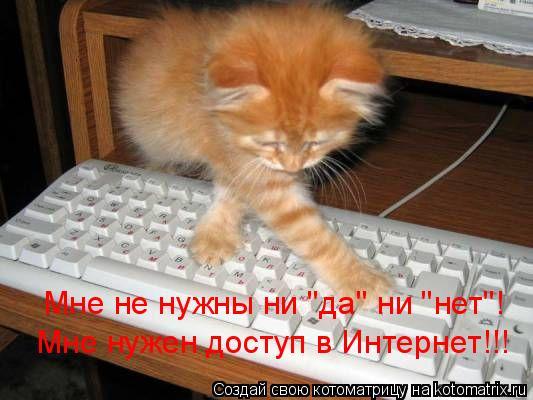 Котоматрица: Мне не нужны ни 'да' ни 'нет'! Мне нужен доступ в Интернет!!!