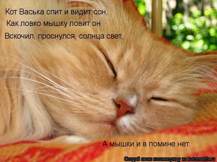 Котоматрица: Кот Васька спит и видит сон, Как ловко мышку ловит он Вскочил, проснулся, солнца свет, А мышки и в помине нет.