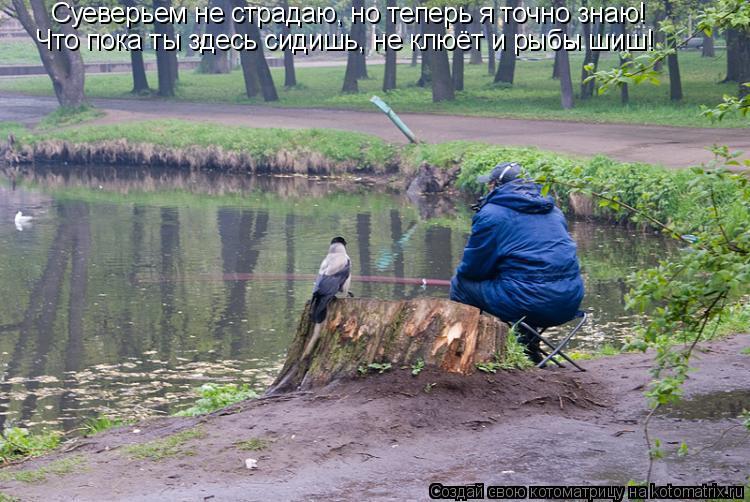 Котоматрица: Суеверьем не страдаю, но теперь я точно знаю! Что пока ты здесь сидишь, не клюёт и рыбы шиш!