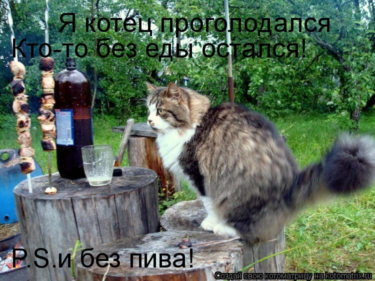 Котоматрица: Я котец проголодался Кто-то без еды остался! P.S.и без пива!