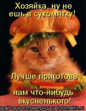Котоматрица: Хозяйка, ну не  ешь в сухомятку! Лучше приготовь  нам что-нибудь вкусненького!
