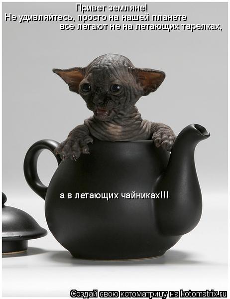 Котоматрица: Привет земляне! Не удивляйтесь, просто на нашей планете все летают не на летающих тарелках, а в летающих чайниках!!!
