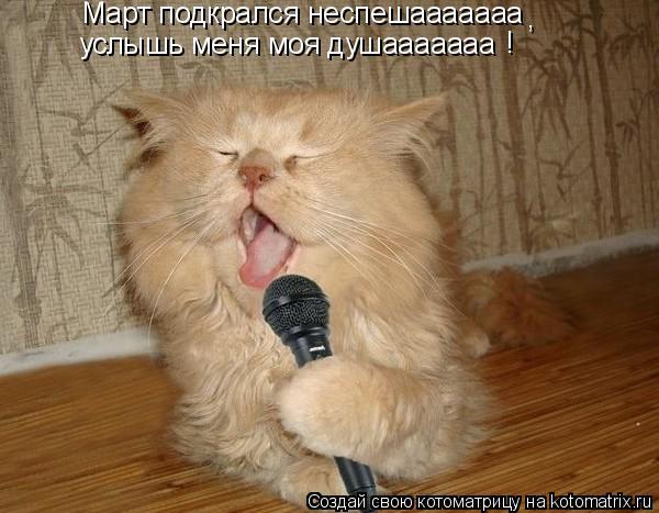 Котоматрица: Март подкрался неспешааааааа услышь меня моя душааааааа , !