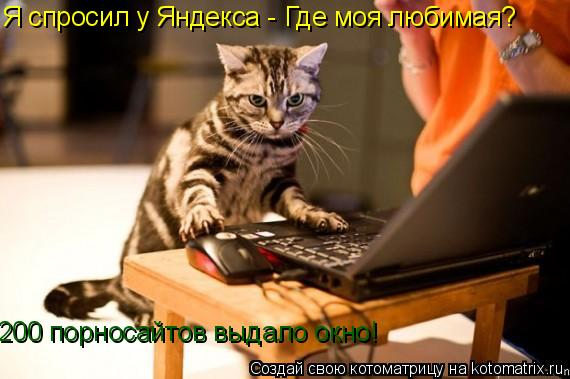 Котоматрица: Я спросил у Яндекса - Где моя любимая? 200 порносайтов выдало окно!