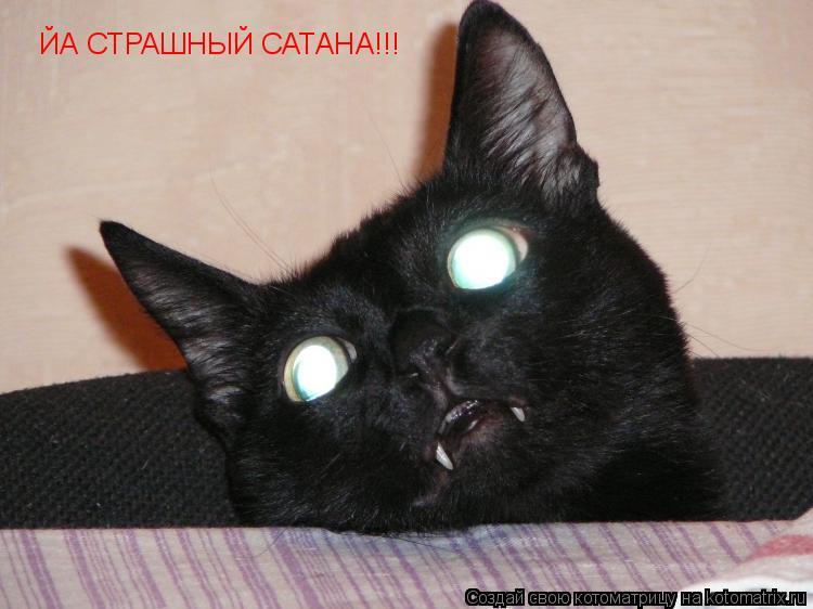 Котоматрица: ЙА СТРАШНЫЙ САТАНА!!!