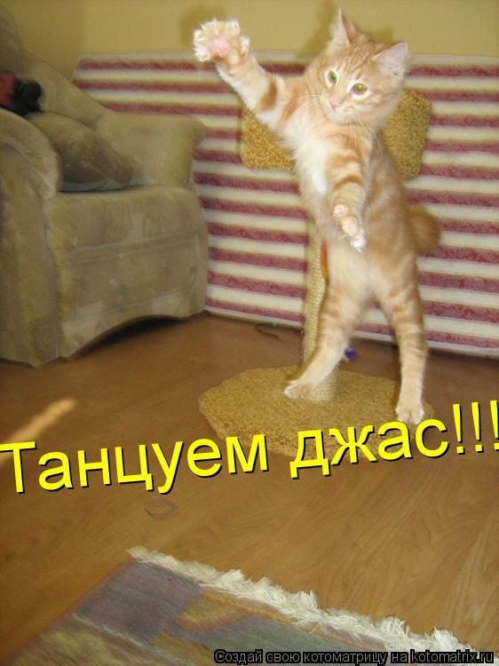 Котоматрица: Танцуем джас!!!