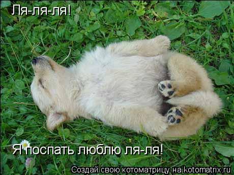 Котоматрица: Ля-ля-ля! Я поспать люблю ля-ля!