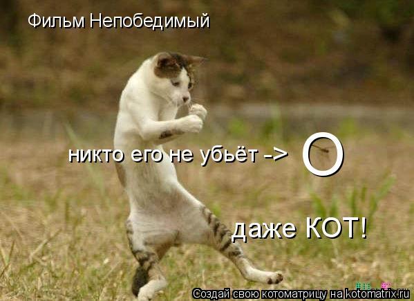Котоматрица: Фильм Непобедимый О никто его не убьёт -> даже КОТ!