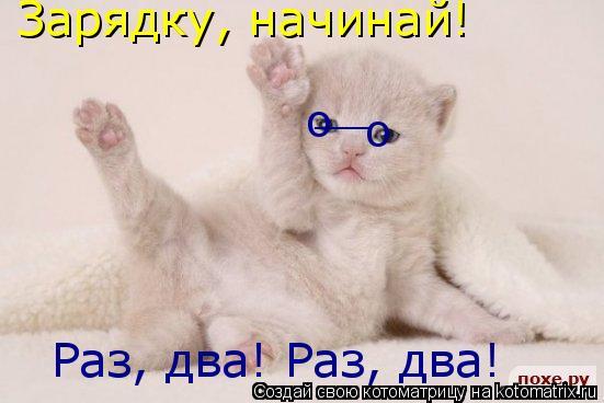 Котоматрица: Зарядку, начинай! Раз, два! Раз, два! о о __