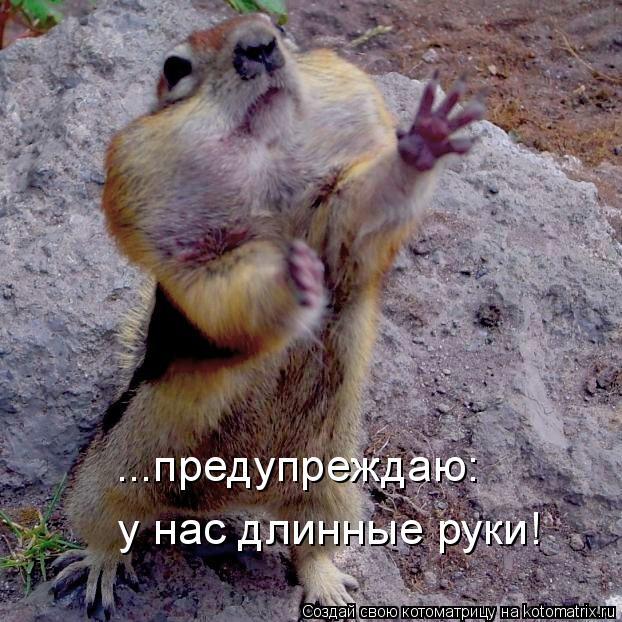 Котоматрица: ...предупреждаю:   у нас длинные руки!