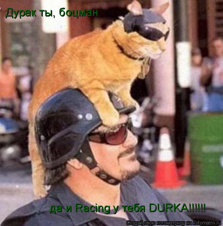 Котоматрица: Дурак ты, боцман да и Racing у тебя DURKA!!!!!!