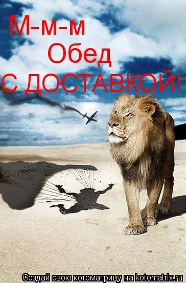 Котоматрица: М-м-м Обед С ДОСТАВКОЙ!