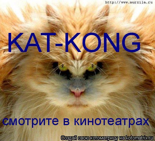 Котоматрица: KAT-KONG смотрите в кинотеатрах