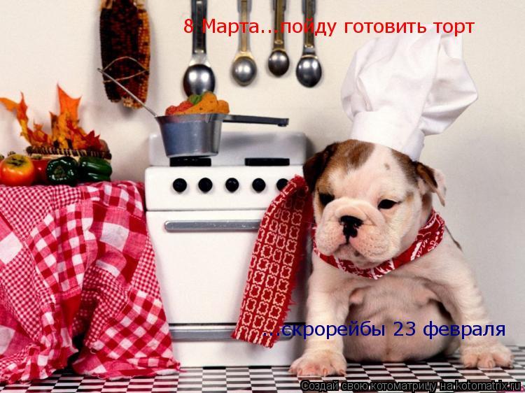 Котоматрица: 8 Марта...пойду готовить торт ...скрорейбы 23 февраля