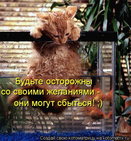 Котоматрица: Будьте осторожны  со своими желаниями -  они могут сбыться! ;)