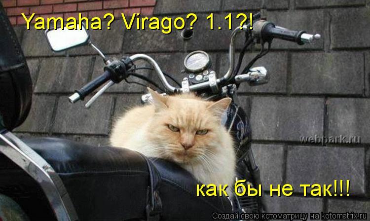 Котоматрица: Yamaha? Virago? 1.1?! как бы не так!!!