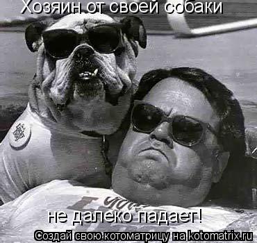 Котоматрица: Хозяин от своей собаки не далеко падает!