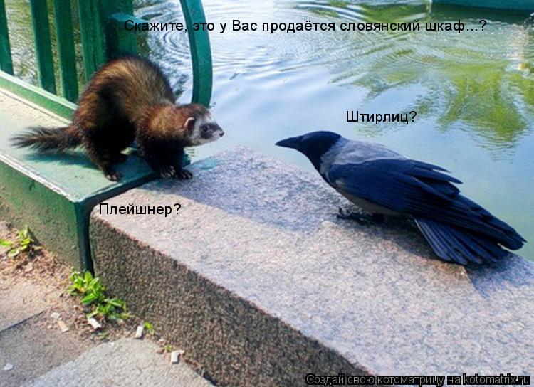 Котоматрица: Скажите, это у Вас продаётся словянский шкаф...? Штирлиц? Плейшнер?