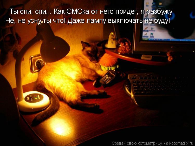 Котоматрица: Ты спи, спи... Как СМСка от него придет, я разбужу  Не, не усну ты что! Даже лампу выключать не буду!