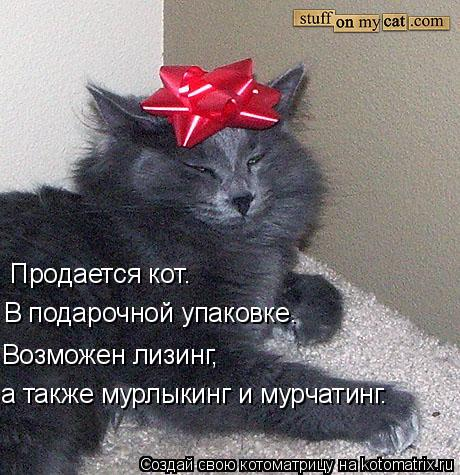 Котоматрица: Продается кот.  В подарочной упаковке. Возможен лизинг, а также мурлыкинг и мурчатинг.