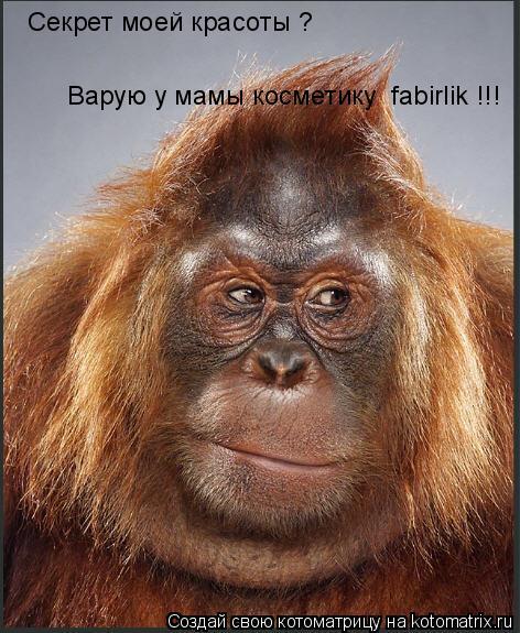 Котоматрица: Секрет моей красоты ? Варую у мамы косметику  fabirlik !!!