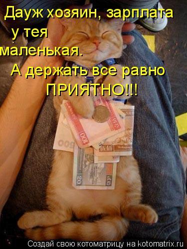 Котоматрица: Дауж хозяин, зарплата у тея маленькая. А держать все равно ПРИЯТНО!!!