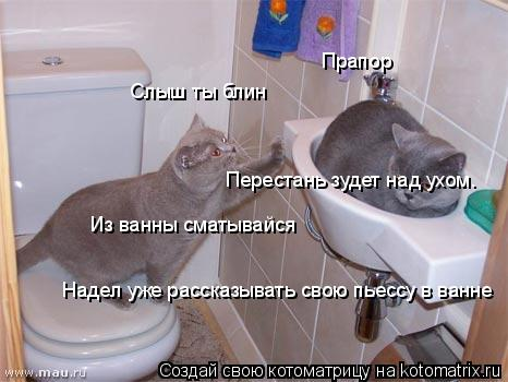 Котоматрица: Слыш ты блин Из ванны сматывайся Прапор Перестань зудет над ухом. Надел уже рассказывать свою пьессу в ванне