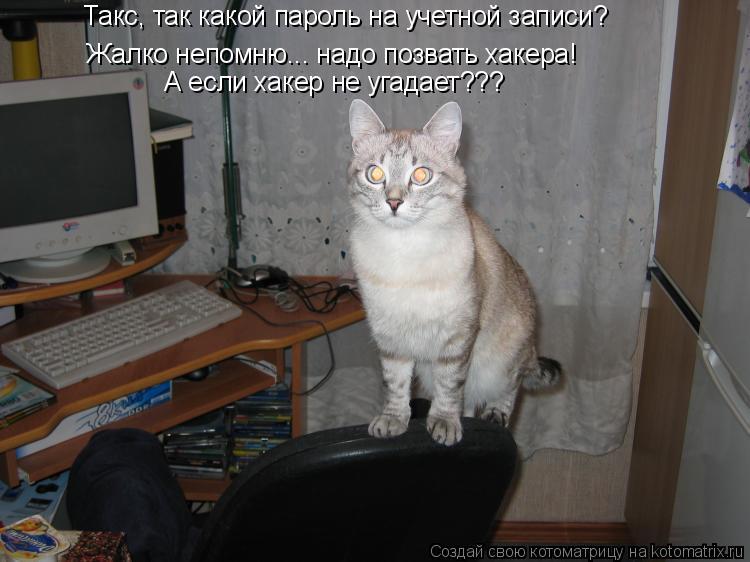 Котоматрица: Такс, так какой пароль на учетной записи Такс, так какой пароль на учетной записи? Жалко непомню... надо позвать хакера! А если хакер не угада