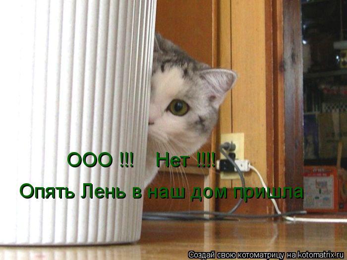Котоматрица: ООО !!!    Нет !!!! Опять Лень в наш дом пришла