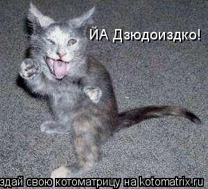 Котоматрица: ЙА Дзюдоиздко!