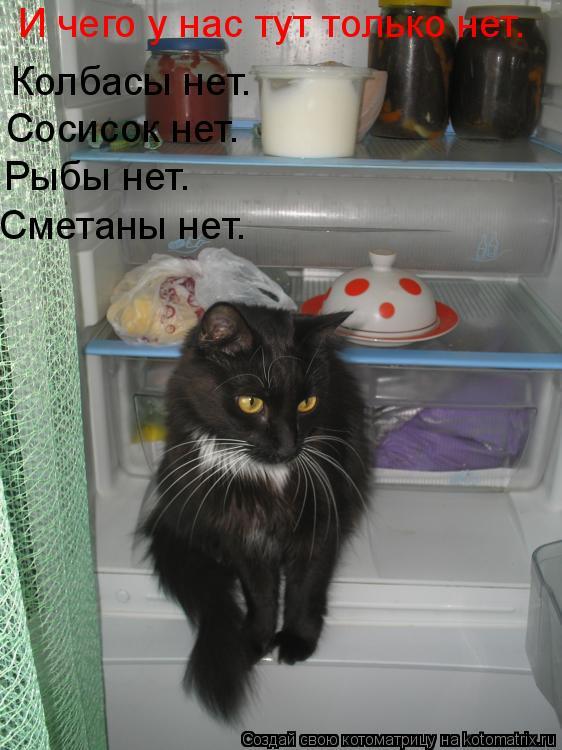 Котоматрица: И чего у нас тут только нет. Колбасы нет. Сосисок нет. Рыбы нет. Сметаны нет.