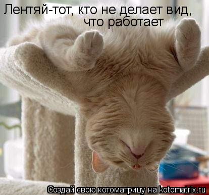 Котоматрица: Лентяй-тот, кто не делает вид, что работает