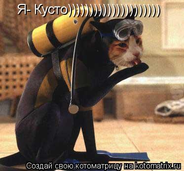 Котоматрица: Я- Кусто)))))))))))))))))))))