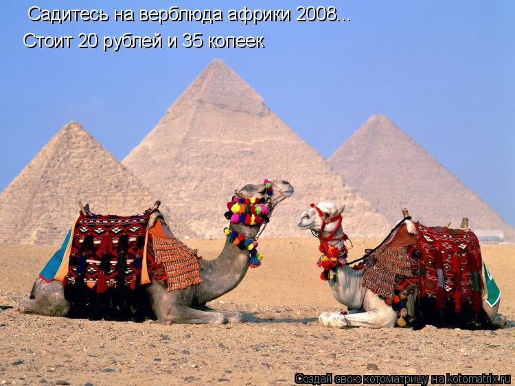 Котоматрица: Садитесь на верблюда африки 2008... Стоит 20 рублей и 35 копеек