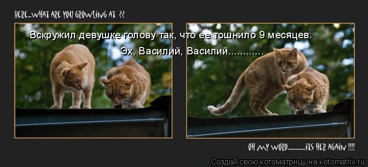 Котоматрица: Вскружил девушке голову так, что ее тошнило 9 месяцев.  Эх, Василий, Василий............