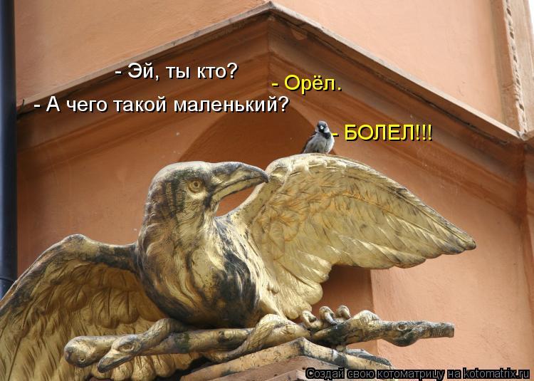 Анекдоты Про Орлов