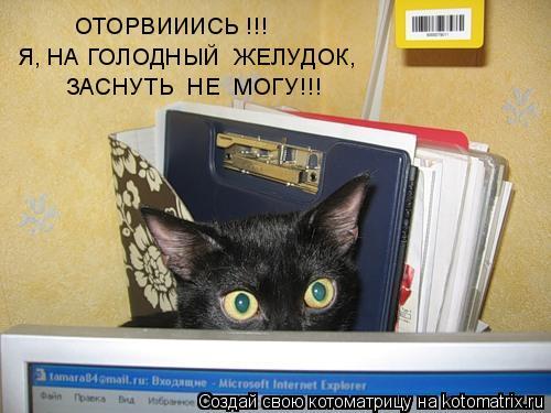 Котоматрица: ОТОРВИИИСЬ !!!   Я, НА ГОЛОДНЫЙ  ЖЕЛУДОК, ЗАСНУТЬ  НЕ  МОГУ!!!