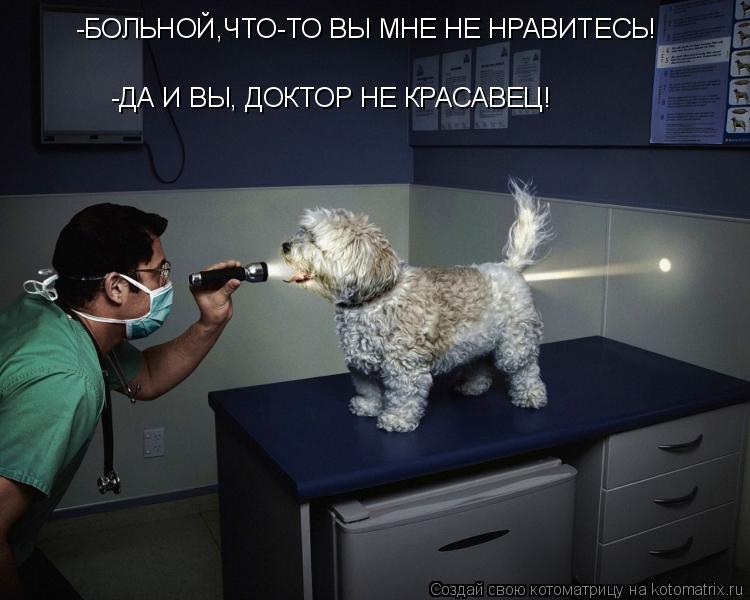 Котоматрица: -БОЛЬНОЙ,ЧТО-ТО ВЫ МНЕ НЕ НРАВИТЕСЬ! -ДА И ВЫ, ДОКТОР НЕ КРАСАВЕЦ!