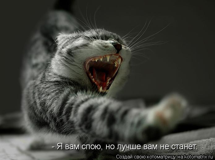 Котоматрица: - Я вам спою, но лучше вам не станет…