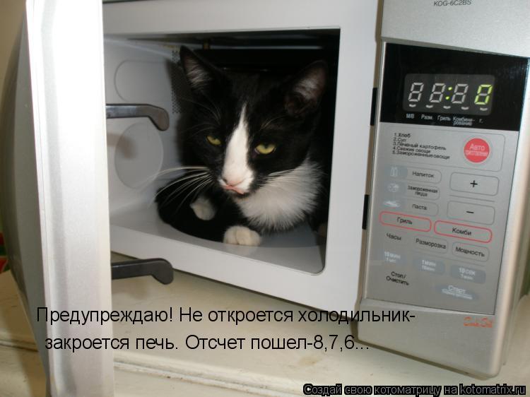 Котоматрица: Предупреждаю! Не откроется холодильник- закроется печь. Отсчет пошел-8,7,6...